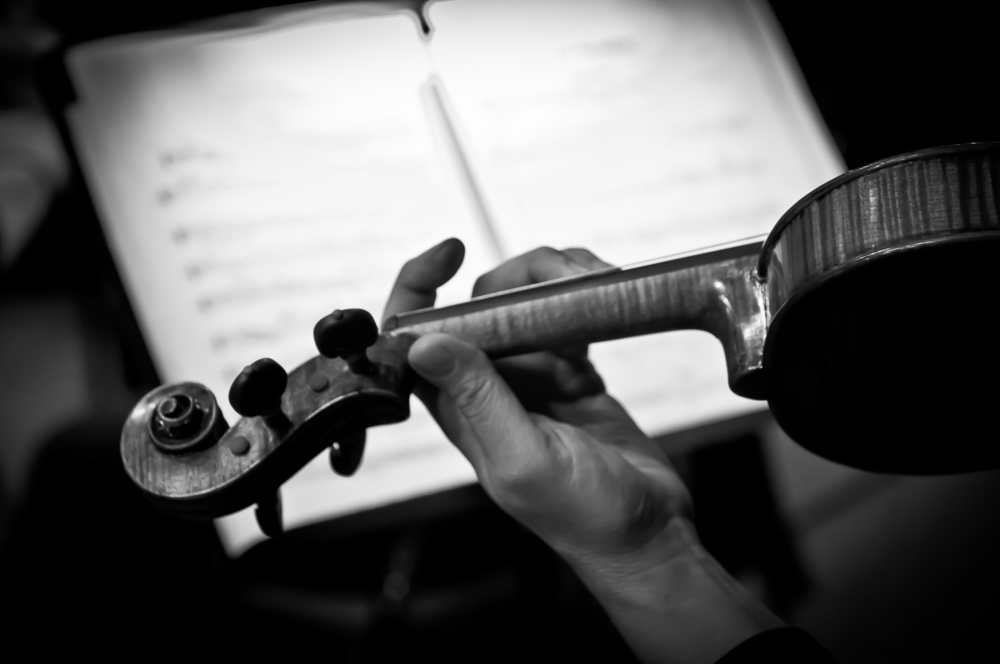 violin black and white.png