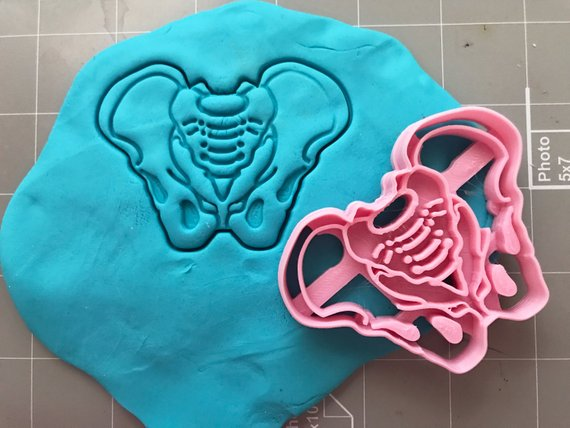 PELVIS COOKIE CUTTER   Well if this isn't a way to market I don't know what is! Pelvis anyone? $11.97 by CookieCutz