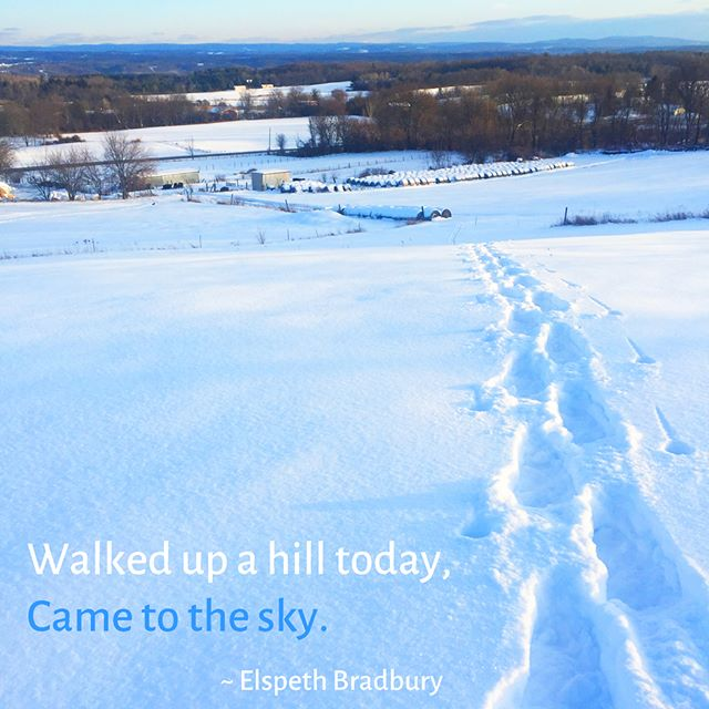 """Walked up a hill today, came to the sky."" These words came to me yesterday as I snowshoed to the summit of one of the rolling hills near Hespera. . They're the opening line of a lullaby that I sang to my five children from the time they were born. Over forty years later, we still sing it when we get together. It's an enchantingly wistful and magical evocation of the soul's encounter with the natural world. . Here's the whole song: . Walked up a hill today, Came to the sky. There I was, I could hardly believe That I reached it so suddenly. . There I was in it And filling with blue, Such a blue, Full of blue, wonderful! Only this morning. . Only the dip of the sun, Another goodbye. There I was, I could hardly believe It was evening so suddenly. . Look at me crying Already, although I always knew, Knew it was coming. I'm crying already My beautiful blue away. . Walked up a hill today, Came to the sky. . . . . #mindful #mindfulness #mindfulliving #wisdom #wisdomforlife #meditation #healing #photooftheday #quoteoftheday #inspiringquotes #winter #snowshoeing #lullaby #magical #nature #poetry #elspethbradbury #mindyourweather"