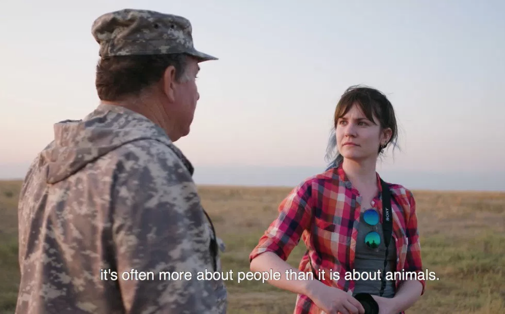 olya esipova featured in a film by nautilus magazine about the challenges of saiga conservation.