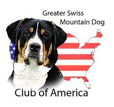 Greater Swiss Mountain Dog Club of America  National Club for the Greater Swiss Mountain Dog
