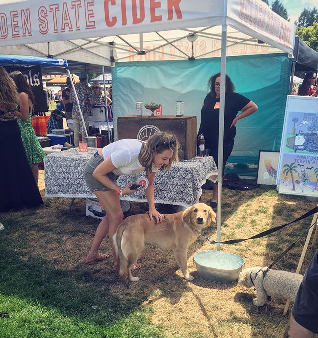 FestForums was all over the map this past weekend, as intern @sydney_john attended the Hop n' Barley festival to enjoy over 50 craft breweries and 13 cideries! Our team mascot, Tux, might be a little jealous of all the puppy love here...