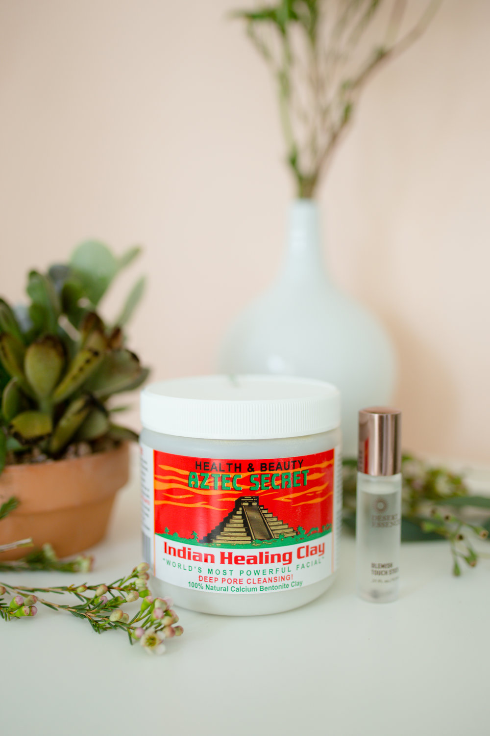 Favorite Green Beauty Products : Acne FIghter's - Desert Essence Tea Tree Blemish Stick + Indian Healing Clay
