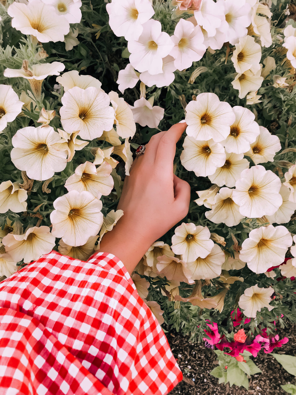 Girl wearing gingham bell sleeve dress holding flowers
