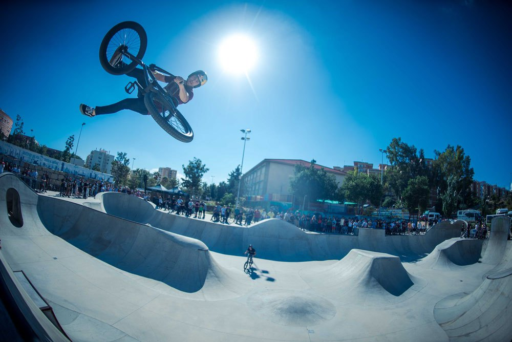 Sergio-Layos-Whip.jpg