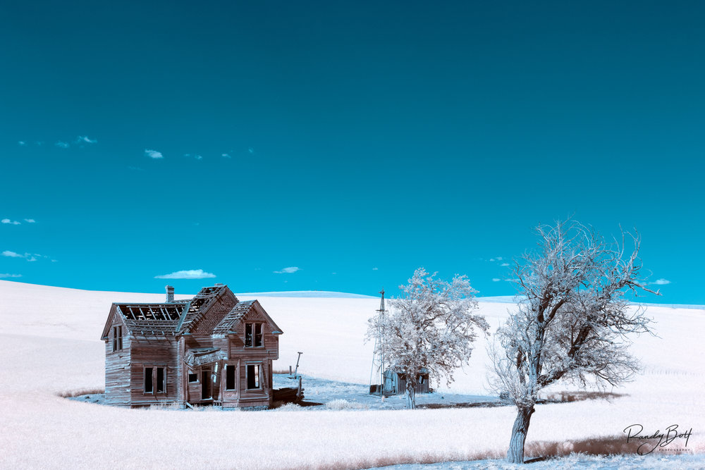 False Color Homestead.jpg