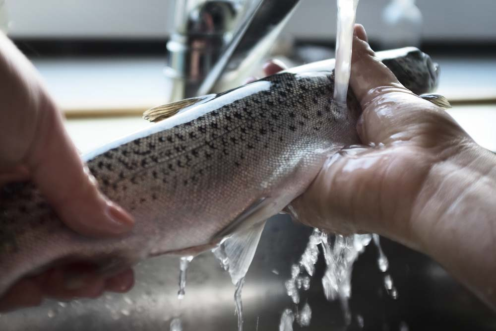 Washing the trouts before cooking them in the smoker
