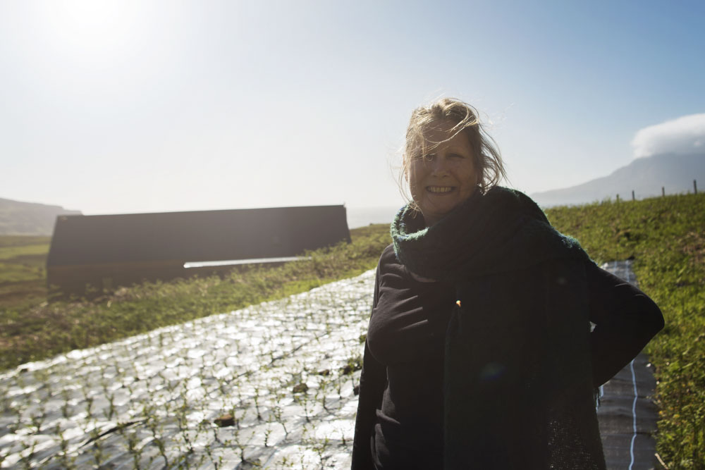 Catherine Davies on one of their new willow fields, Isle of Eigg, Scotland.