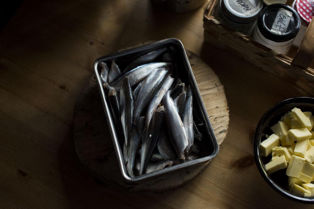 Wild food Finland