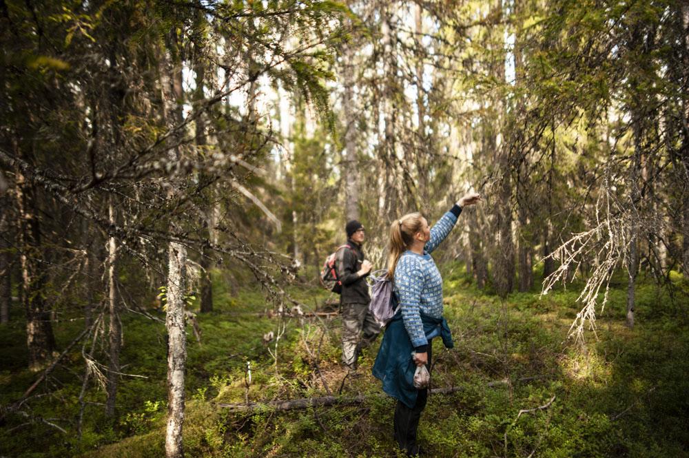 Lets-Go-Slow-Finland-Lets-Go-Slow-Finland-_DSC8165-web.JPG
