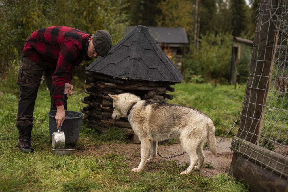 Lets-Go-Slow-Finland-husky mamaLets-Go-Slow-Finland-husky mamaDSC_6323-web.JPG