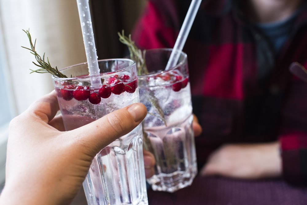 Gin & Tonic with cranberries