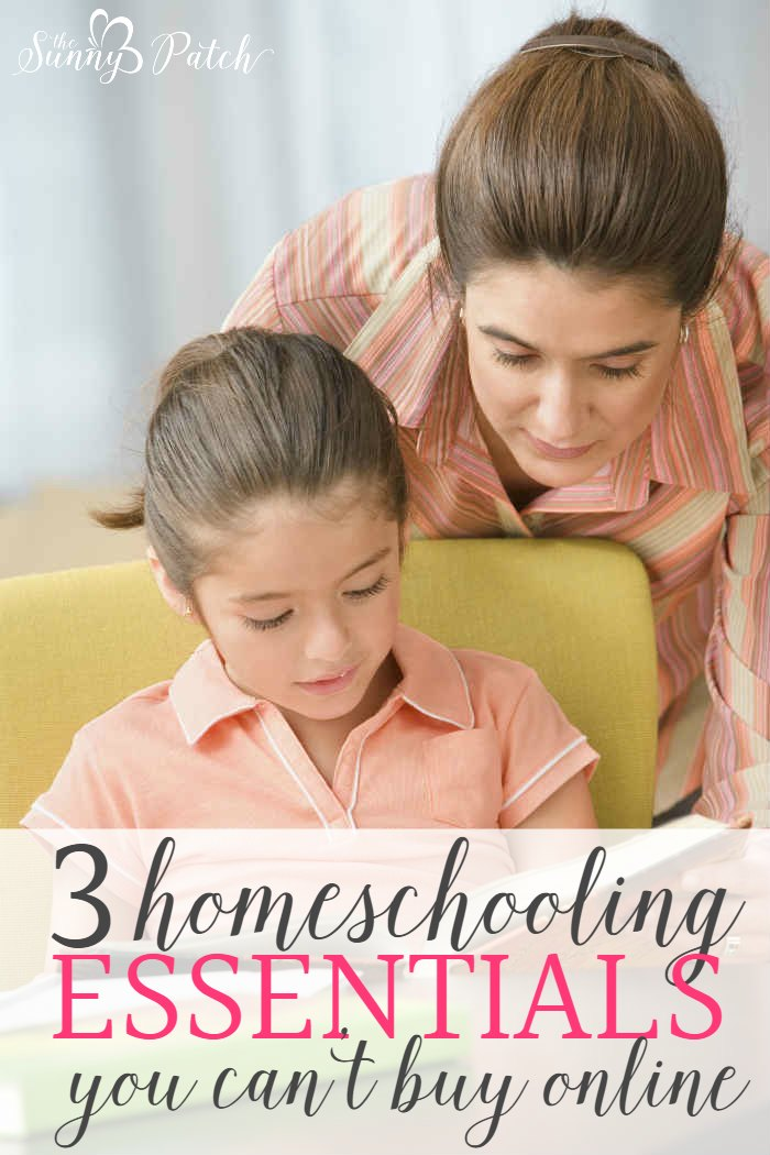 There are a few necessary homeschooling essentials - something every homeschool needs. And you can't buy them in in a store.
