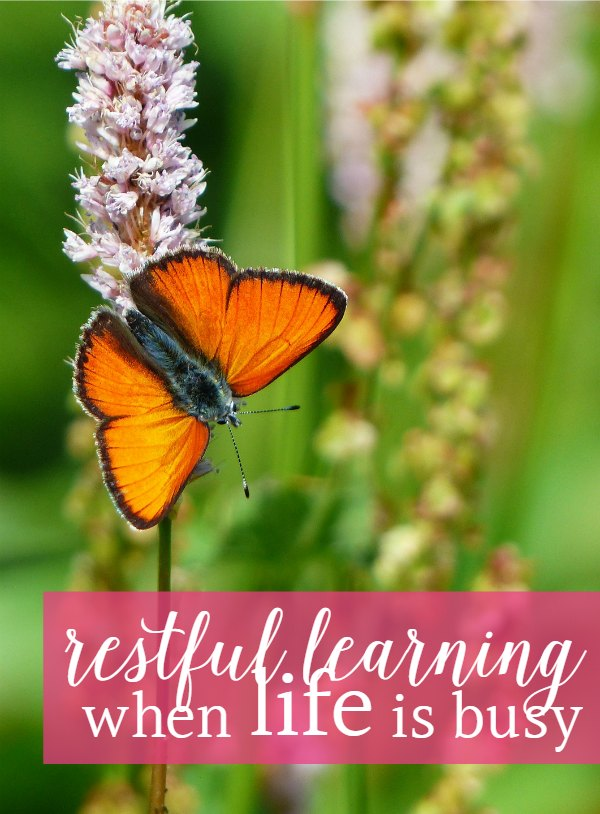 Finding peace in your homeschool when life is busy can feel elusive. These homeschooling tips can help keep your homeschool on-track, even in the midst of crisis.
