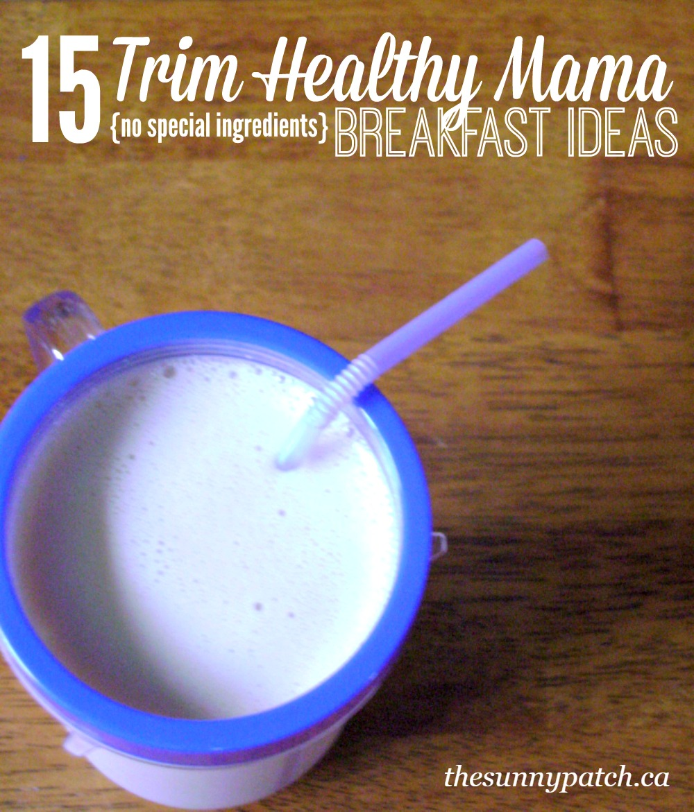 Following the Trim Healthy Mama plan and need some guidance with your meal choices? Check out this list of 15 breakfast ideas that don't require any specialty ingredients.