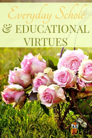 EDUCATIONAL VIRTUES.jpg