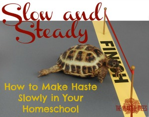 Slow and Steady in Your Homeschool.jpg
