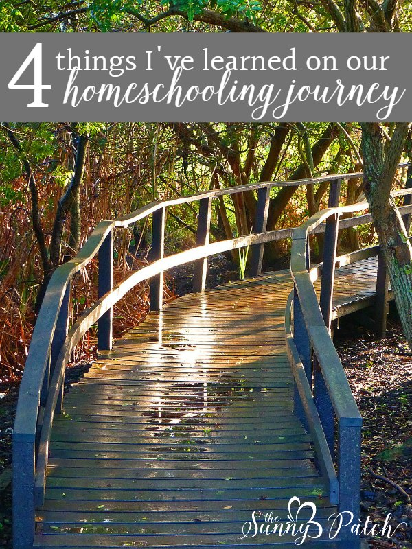 There are four things that I've learned on this homeschooling journey. It's okay to relax, try to simplify, find time for rest, and educate yourself. Take a look at how we've changed on this homeschooling journey.