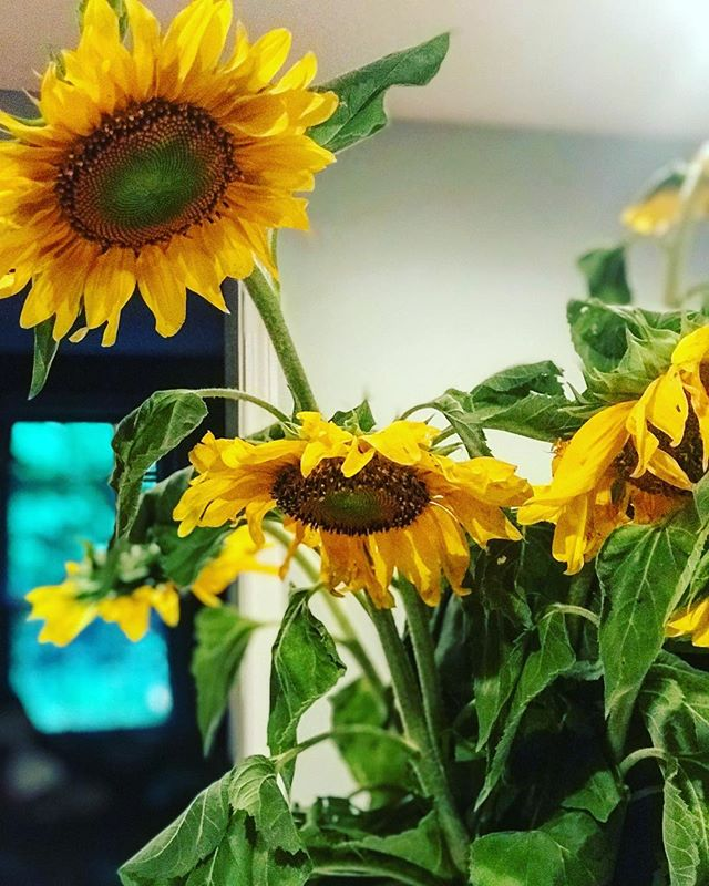 Dear Stepmommas, this week I challenge you to: 🌻 ❤️ . . - Love yourself a little more - Find your passion - Don't sweat the Small stuff - Go for a run - Go out of your way to do something nice for your stepchildren (even if you aren't getting along). - Schedule a date night for you and your significant other. - Make a list of attainable goals you want to achieve in the near future. - Forget about any drama you are currently dealing with from the ex this week!