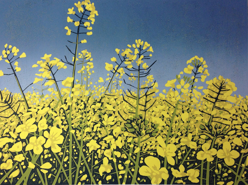 Sunshine Fields | 54cm x 44cm Reduction Linocut