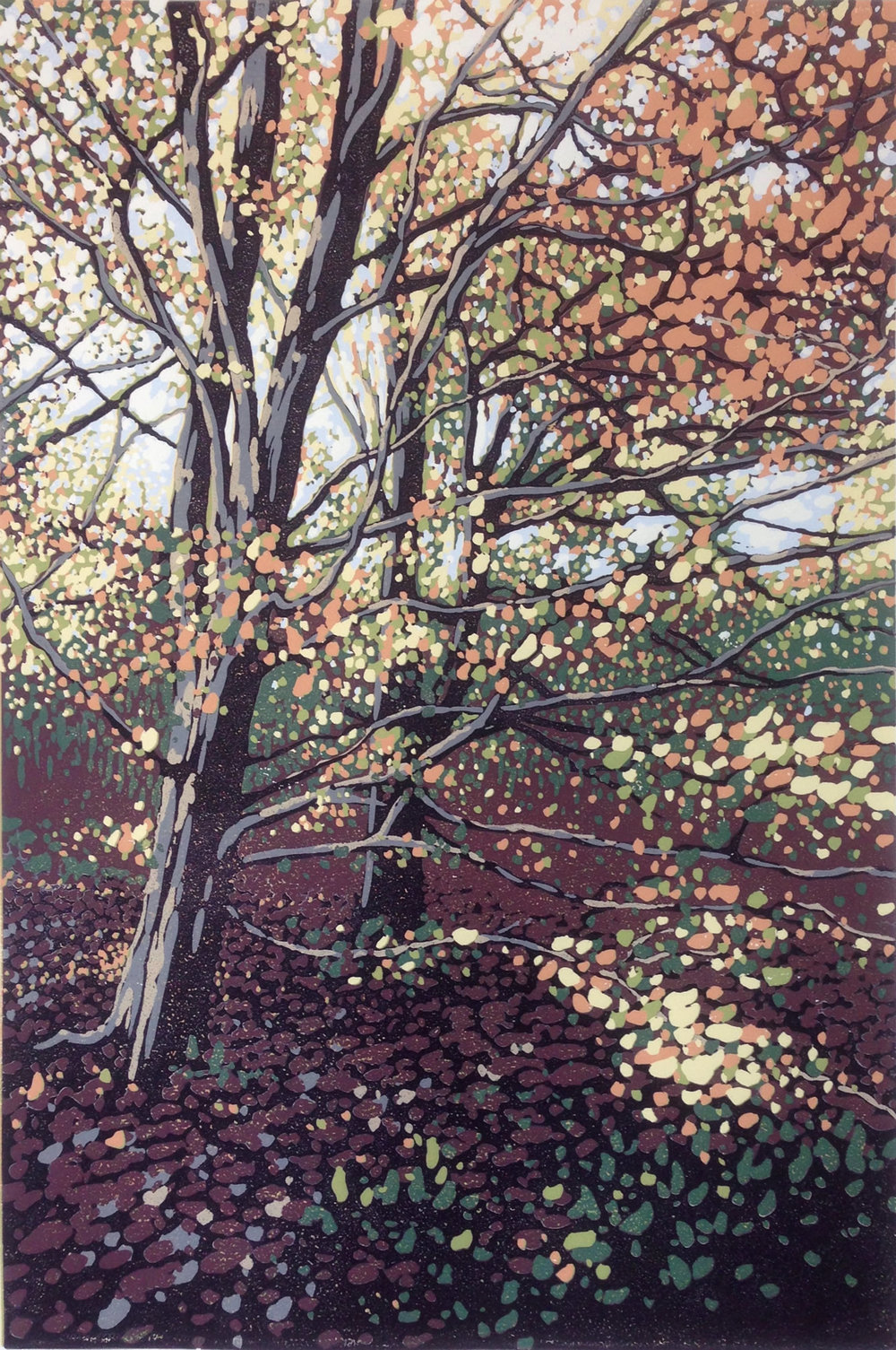 Autumn Beeches | 40cm x 60cm Reduction Linocut