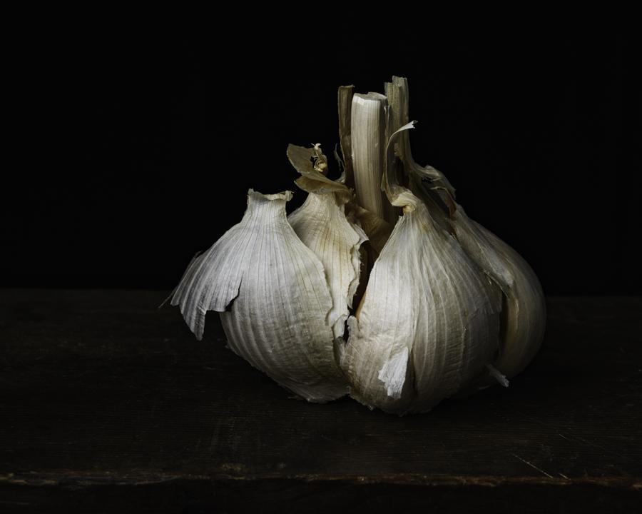 Garlic II 2016-.jpg