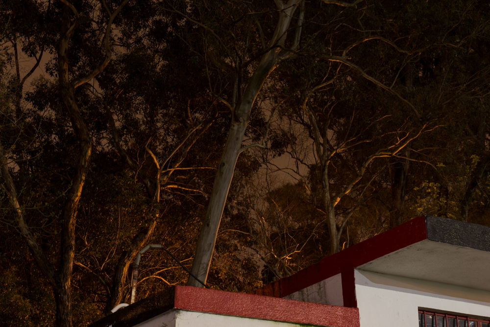 Anabela Brito Mendes, da série F, 2014 PERCURSOS 26 Out 2014 — 16 Nov 2014