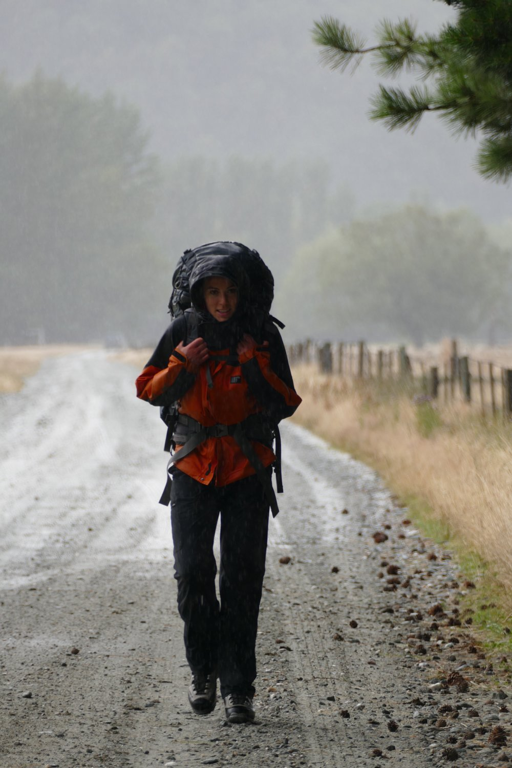 Lydzo trudges up the Matukituki road in the rain.