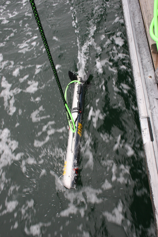 4125 in water.jpg