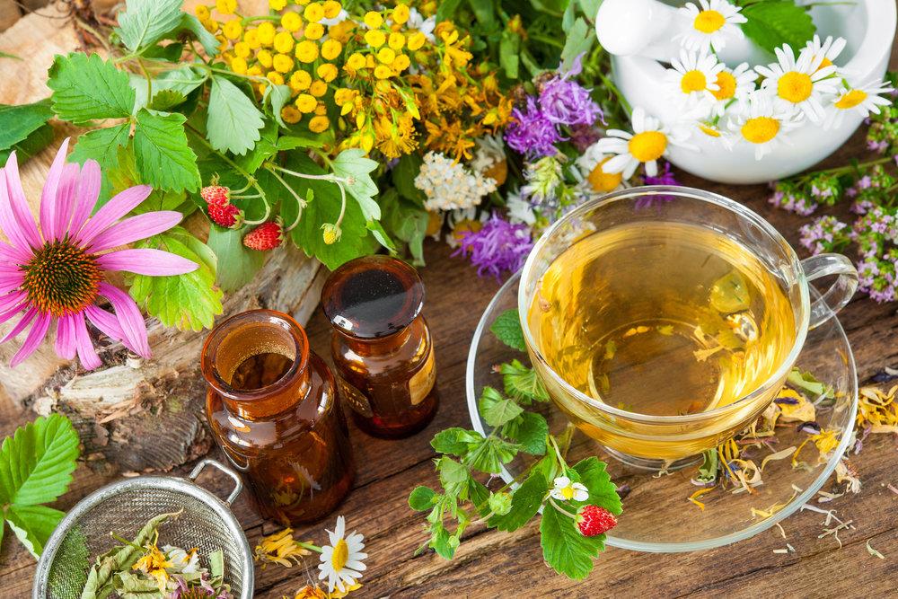 Shop Herbal Medicine