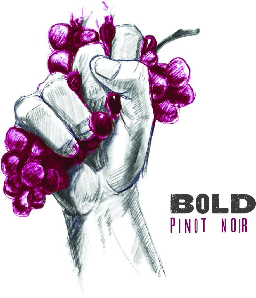 2017 Pinot Noir SLH.jpg