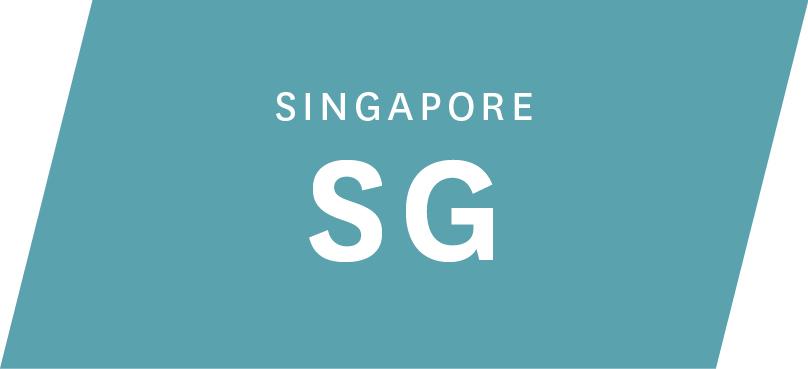 004-5 EverEdge Website - Terms SG.jpg