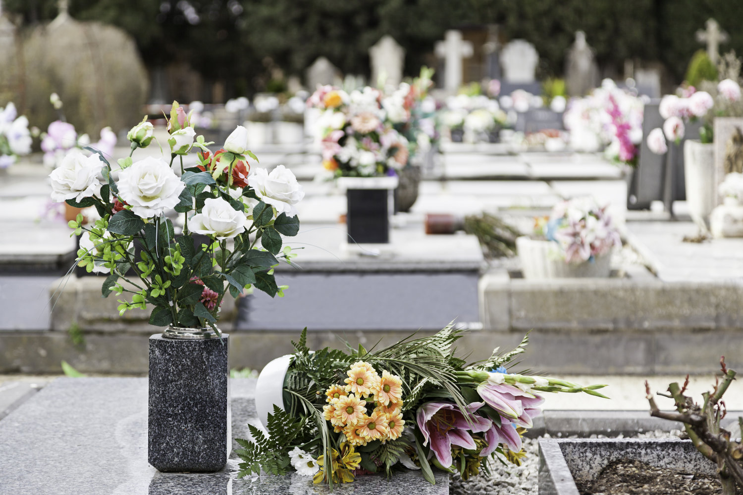 Burial cremation sonoma funeral home izmirmasajfo Choice Image