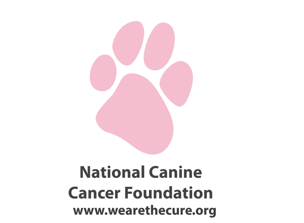 nccf logo WATC.png