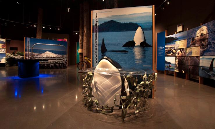 Orca Head, Vancouver Island Visitor Centre
