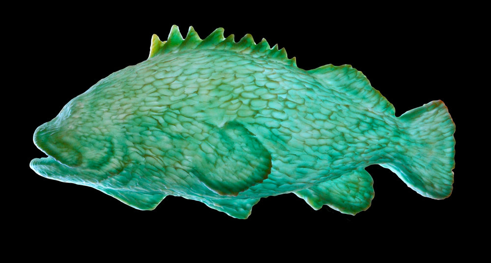 Translucent Rock Cod by Bowen Island sculptor Trent Hutton