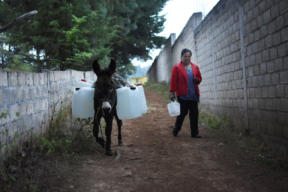 "Maria Isabel takes a donkey to collect water every morning. She wakes up at 6:30 am to gather water, make breakfast and then walk her daughter to school. "" If I do not go and get water, I cannot bathe, I cannot drink, I cannot use water to make food. I want them to come and see our community without water."""