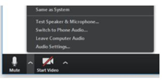 5. Test your Microphone and Camera - Click on the mic and camera icons to turn them on and off.If you click on the up arrows next to the microphone or video symbols you can select your mic and camera. You can also Test your Speakers and Microphone by clicking that option.