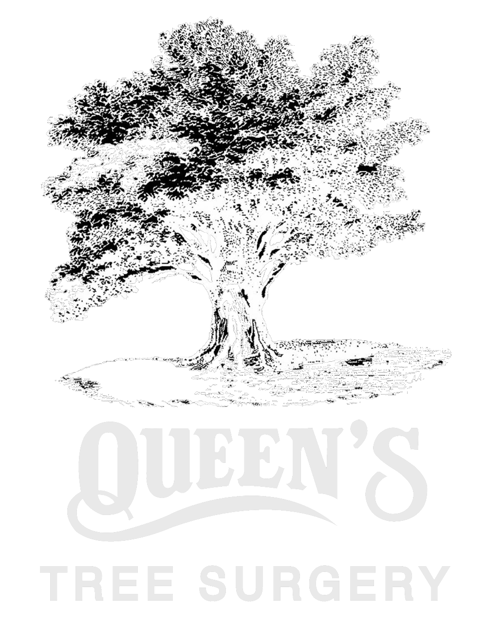 Queen's Tree Surgery Logo