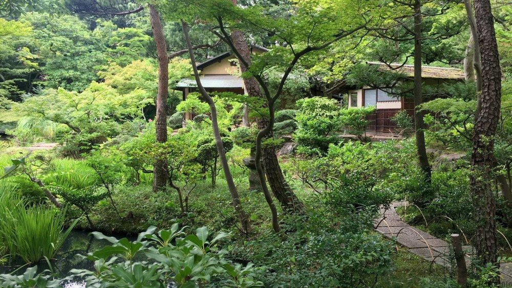 T-16 Days - If there is one Japanese garden you should visit while you are here THIS IS IT - the Nezu Museum Garden - only a 5 minutes walk from Omotesando crossing. The museum building is by Kengo Kuma - but it is the garden which is the real attraction! http://www.nezu-muse.or.jp/en/index.html
