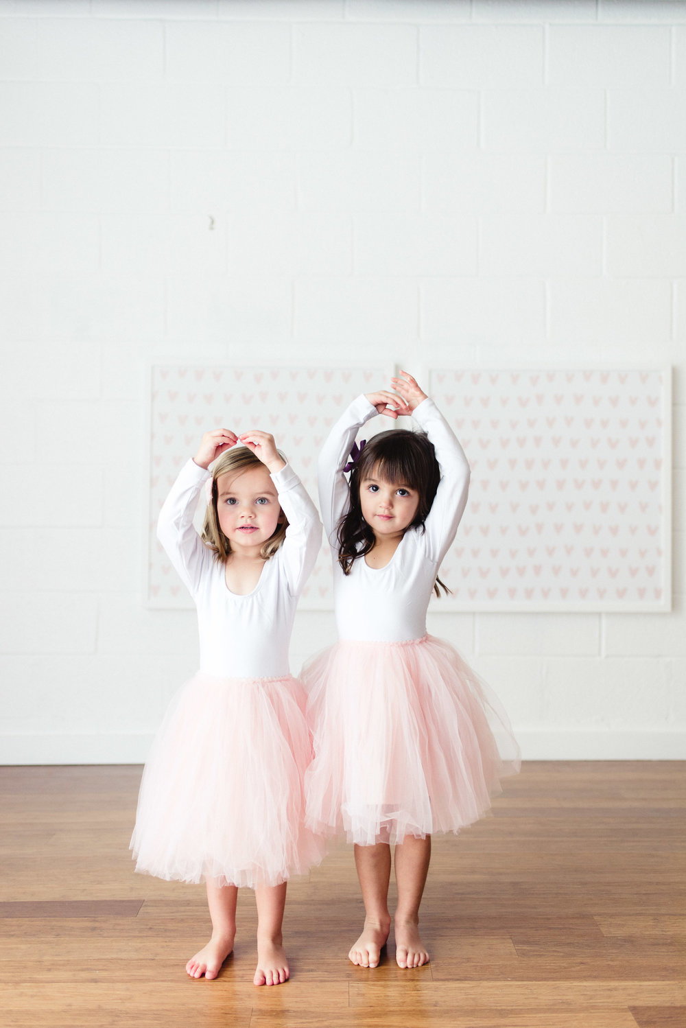 Tutu skirt    Ballet leotard
