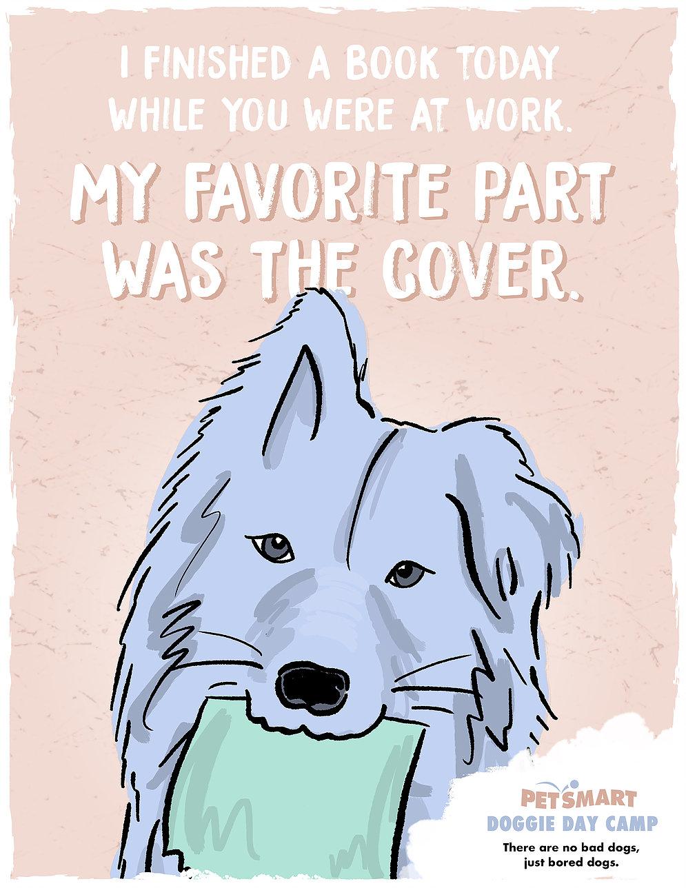 petsmart-doggie-day-camp-book.jpg