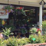 Zionsville Village