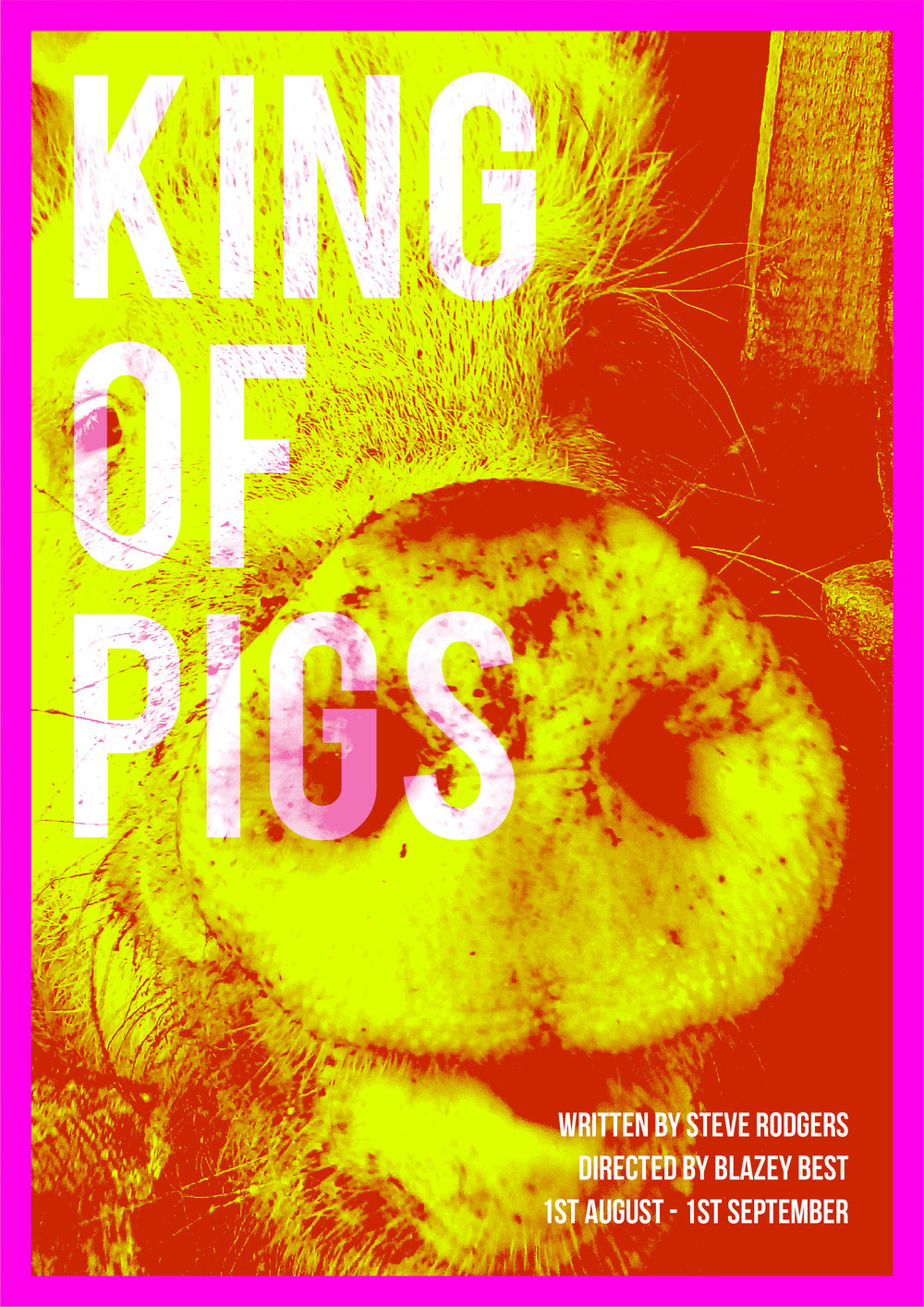 RLP19763_King of Pigs_Web_A4-01.jpg