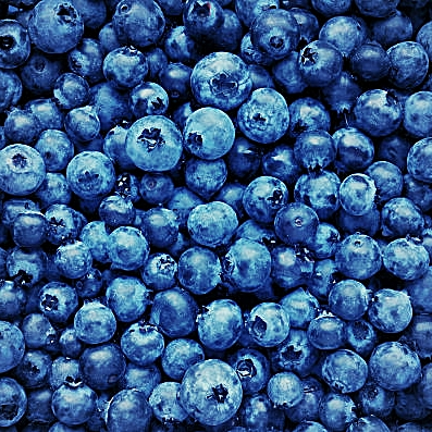 blueberries-2.jpg