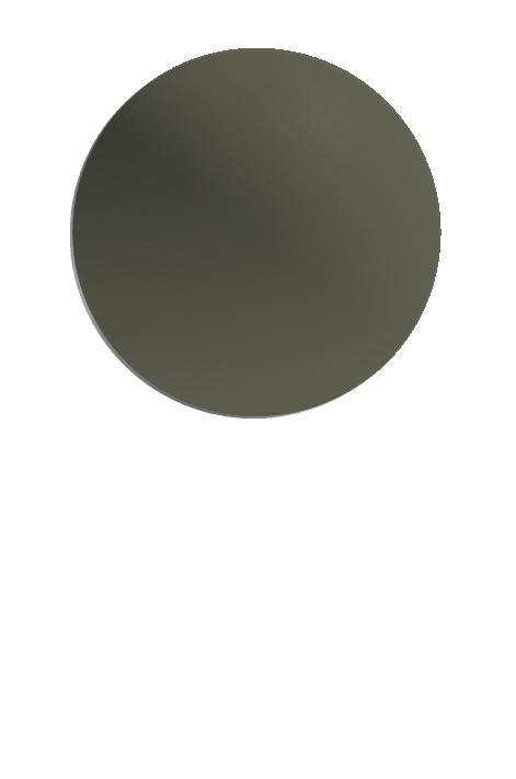 MANGROVE (S)