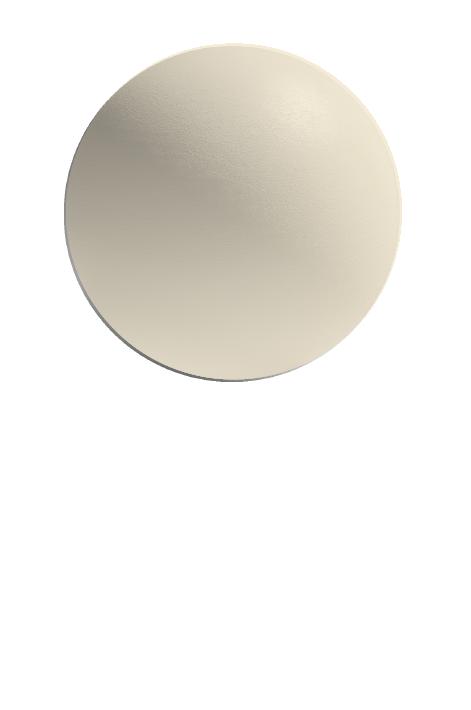 WHITE BIRCH (G)