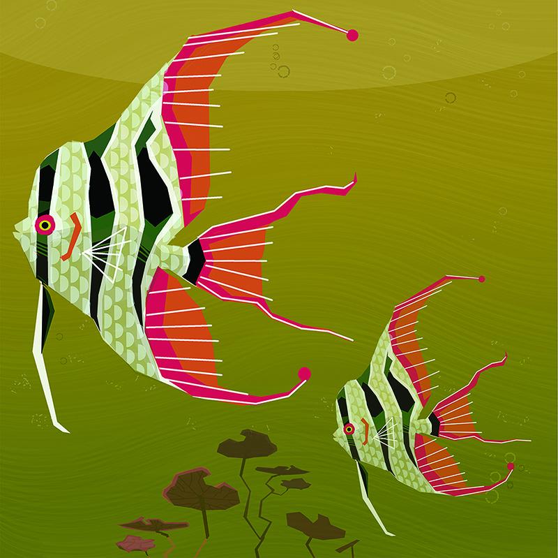 "Angelfish"", digital.8""x8"""