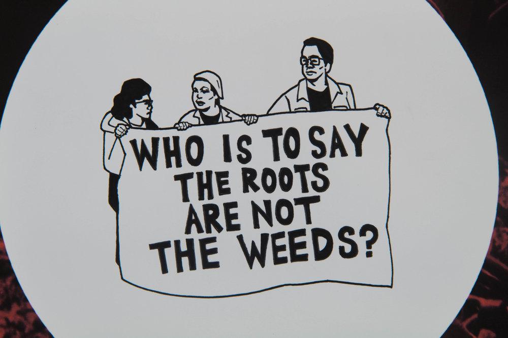 weedsroots-2.jpg