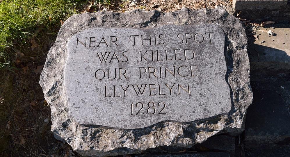 princellwylyn6.jpg